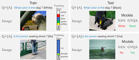 Don't Just Assume; Look and Answer: Overcoming Priors for Visual Question Answering